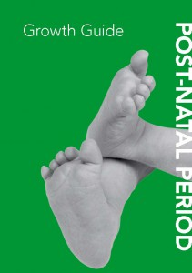 Book Cover: The Netherlands - Post-natal period - english version