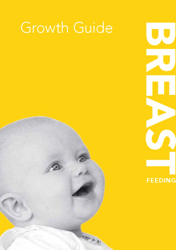 Book Cover: The Netherlands - breastfeeding - english version